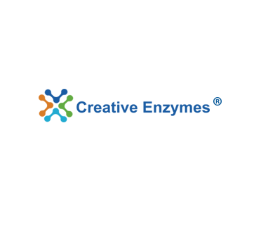 Creative Enzymes Releases High-quality Enzyme Expression …